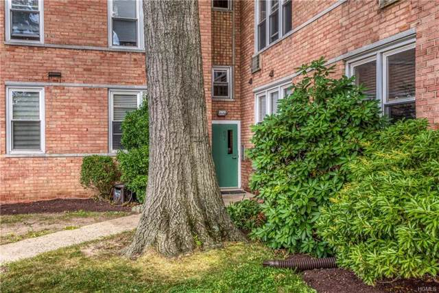 25 Trinity Place 1H, New Rochelle, NY 10805 (MLS #5063040) :: William Raveis Baer & McIntosh