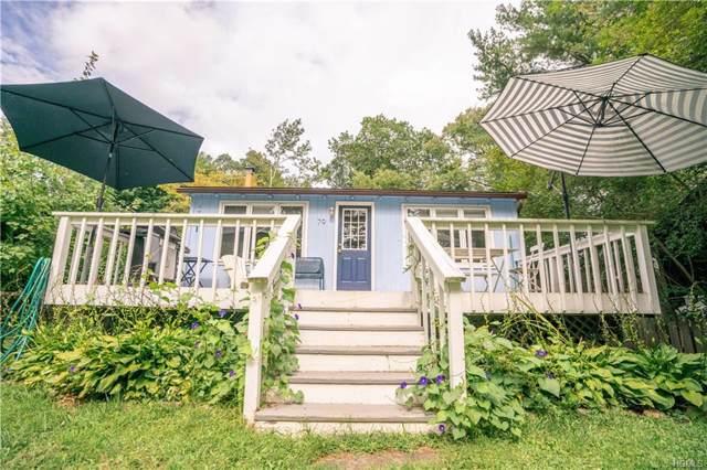 79 S Lake Drive, Patterson, NY 12563 (MLS #5063052) :: Mark Boyland Real Estate Team