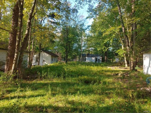 4908 State Route 55, Swan Lake, NY 12783 (MLS #5063715) :: Shares of New York
