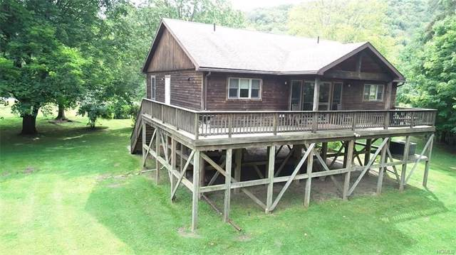 680 Hazel Road, Livingston Manor, NY 12758 (MLS #5063860) :: William Raveis Legends Realty Group