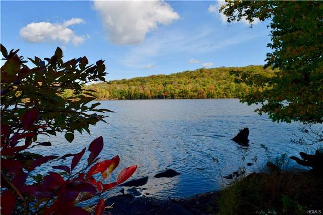 7 Redwood Lane, Swan Lake, NY 12783 (MLS #5064374) :: William Raveis Legends Realty Group