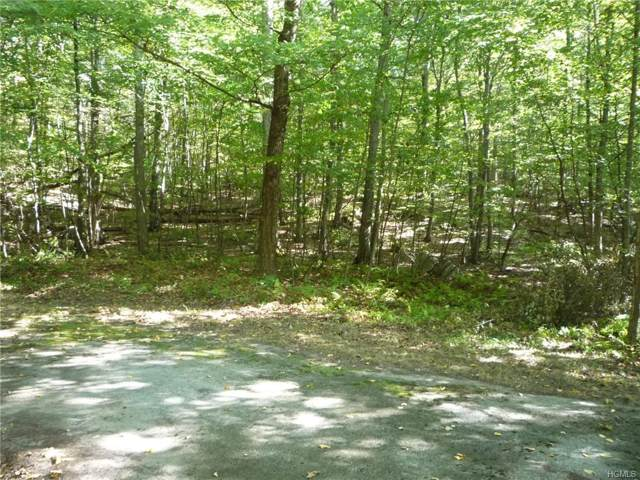 Laurel Mountain Court Road, Carmel, NY 14477 (MLS #5064459) :: The Anthony G Team