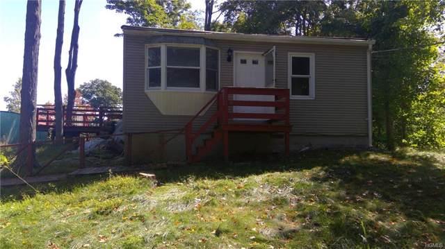 395 Haviland Drive, Patterson, NY 12563 (MLS #5067198) :: Mark Boyland Real Estate Team