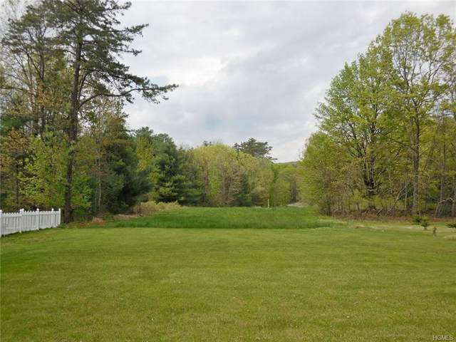 1111 Space Drive, Huguenot, NY 12746 (MLS #5068441) :: Shares of New York