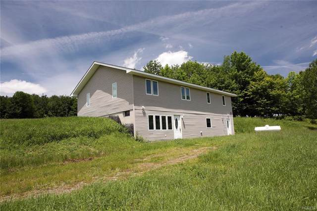 217 Adams Road, Equinunk, NY 18417 (MLS #5068562) :: William Raveis Legends Realty Group