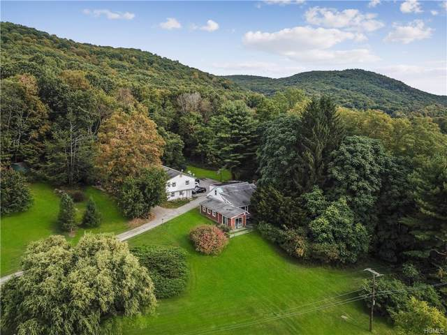 677 Butts Hollow Road, Dover Plains, NY 12522 (MLS #5068601) :: William Raveis Legends Realty Group