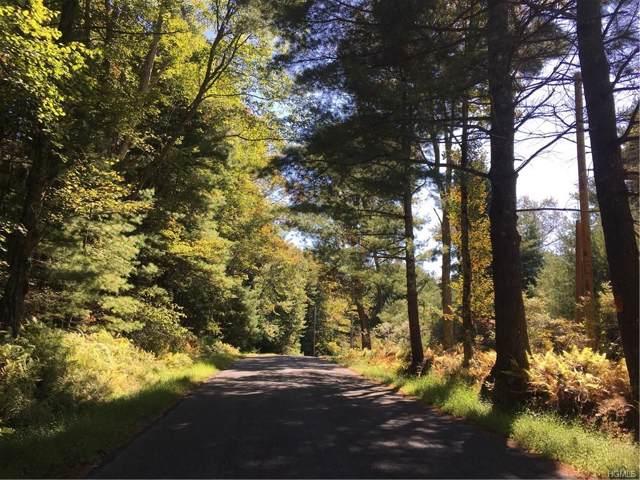 S Maplewood Road, Monticello, NY 12701 (MLS #5068622) :: William Raveis Baer & McIntosh