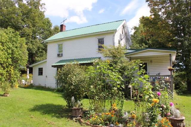 109 Debruce Road, Livingston Manor, NY 12758 (MLS #5068893) :: William Raveis Legends Realty Group