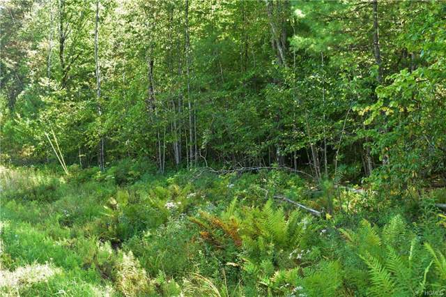 Tbd Briggs Highway, Ellenville, NY 12428 (MLS #5069879) :: Shares of New York