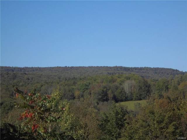 E E Hill Road S Lot 42 Road S, White Sulphur Spring, NY 12748 (MLS #5069935) :: Mark Boyland Real Estate Team