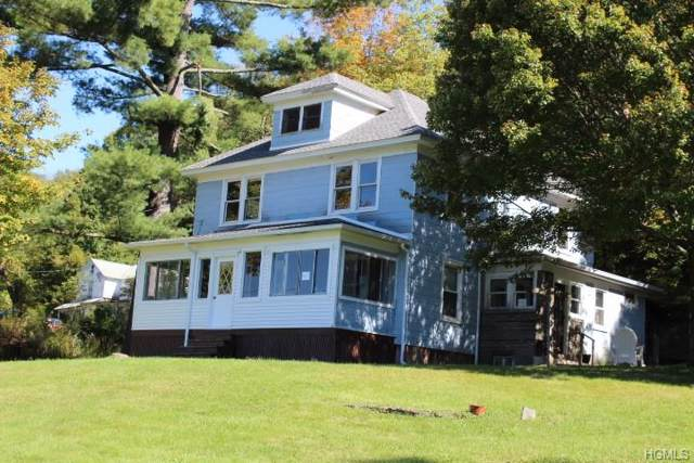 466 Old Route 17, Livingston Manor, NY 12758 (MLS #5069936) :: William Raveis Legends Realty Group