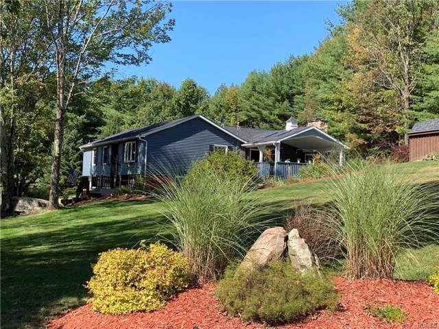 81 Hastings Drive, Grahamsville, NY 12740 (MLS #5069995) :: William Raveis Legends Realty Group