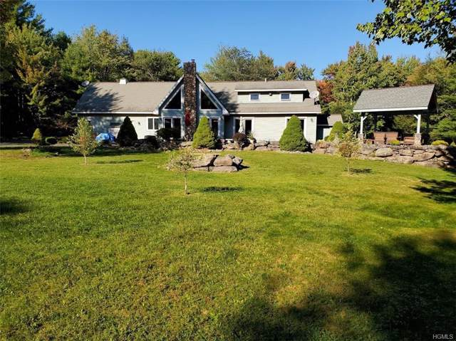 103 Zinno Road, Windham, NY 12407 (MLS #5071276) :: William Raveis Legends Realty Group
