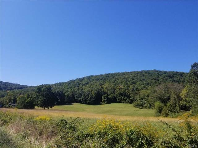 W Dover Road, Pawling, NY 12564 (MLS #5071400) :: William Raveis Legends Realty Group