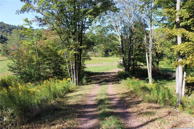 1583 Old Route 17, Roscoe, NY 12776 (MLS #5072451) :: Shares of New York