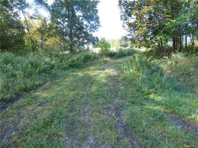 County Hwy 1, Warwick, NY 10990 (MLS #5073695) :: Mark Boyland Real Estate Team