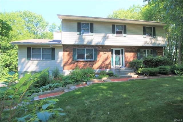 111 David Drive, Pleasant Valley, NY 12601 (MLS #5076443) :: Mark Seiden Real Estate Team