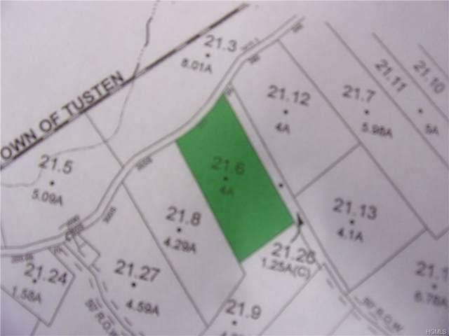 Smith Hughes Road, Yulan, NY 12528 (MLS #5076797) :: Mark Seiden Real Estate Team