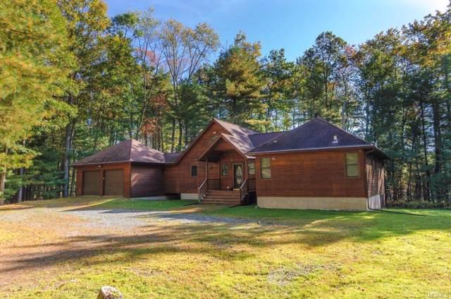55 Timber Lake Drive, Yulan, NY 12792 (MLS #5079086) :: Mark Seiden Real Estate Team