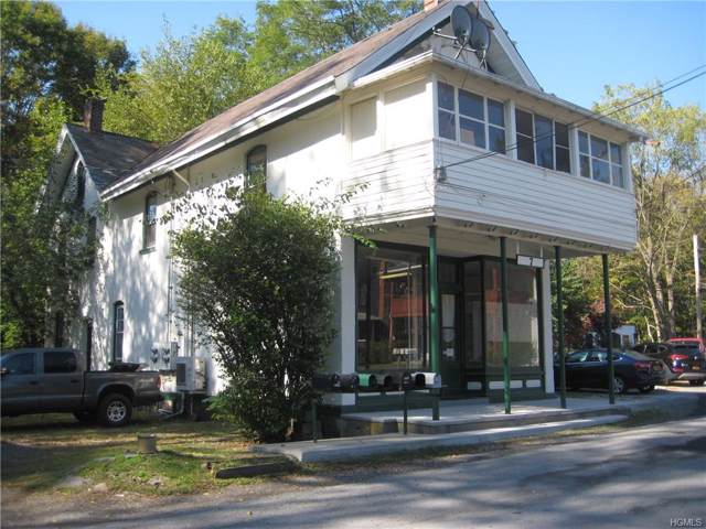 7 Oxford Square, Chester, NY 10918 (MLS #5079126) :: Shares of New York