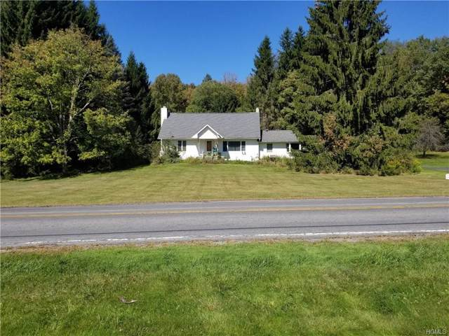 773 County Road 94, Hankins, NY 12741 (MLS #5080770) :: William Raveis Legends Realty Group