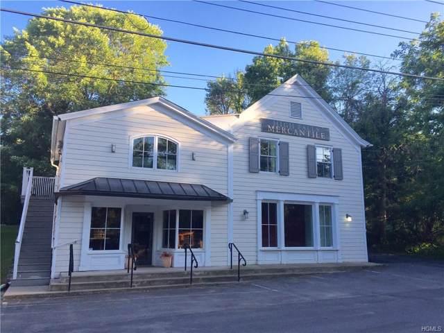 113 Main Street, High Falls, NY 12740 (MLS #5081478) :: William Raveis Baer & McIntosh