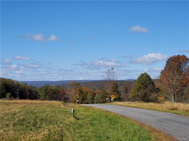 Hunter Road, Neversink, NY 12765 (MLS #5081544) :: William Raveis Baer & McIntosh