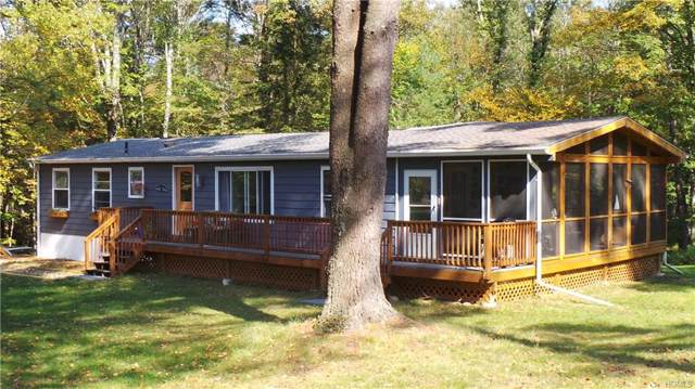 321 Pine Grove Road, Smallwood, NY 12778 (MLS #5085030) :: Marciano Team at Keller Williams NY Realty