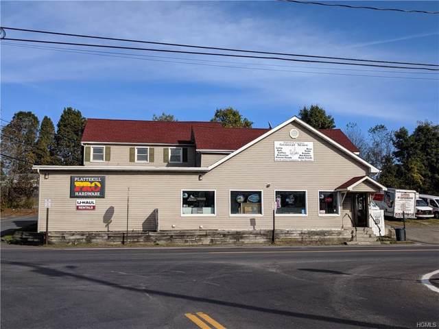 18 Plattekill Ardonia Road, Wallkill, NY 12589 (MLS #5085103) :: William Raveis Baer & McIntosh