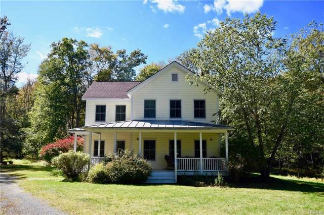 64 Tusten Farm Lane, Narrowsburg, NY 12764 (MLS #5086527) :: The McGovern Caplicki Team
