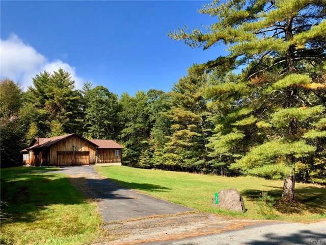 32 Evergreen Lane, Narrowsburg, NY 12764 (MLS #5088194) :: Mark Seiden Real Estate Team