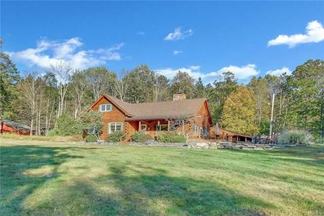 88 Old Cahoonzie Road, Sparrowbush, NY 12780 (MLS #5088196) :: Mark Seiden Real Estate Team