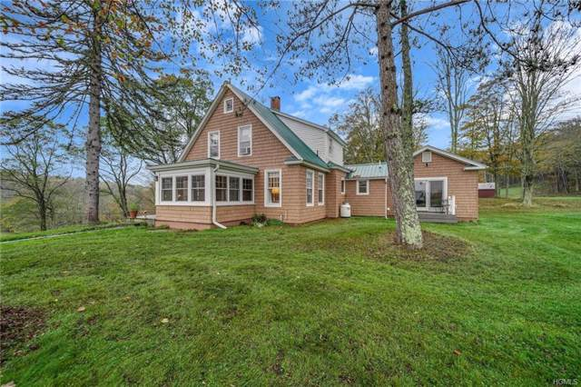 537 Hurd Road, Swan Lake, NY 12783 (MLS #5088336) :: Marciano Team at Keller Williams NY Realty