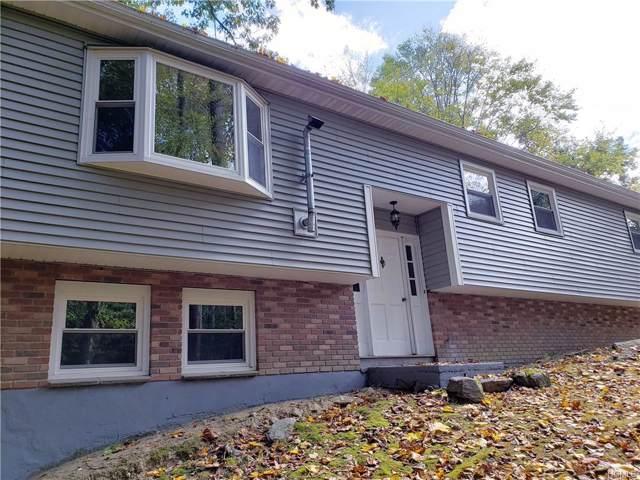 8 Venice Road, Patterson, NY 12563 (MLS #5090614) :: Marciano Team at Keller Williams NY Realty