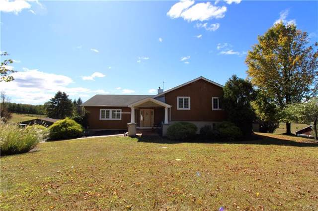159 Pine Hill Road, Chester, NY 10918 (MLS #5090759) :: Mark Boyland Real Estate Team