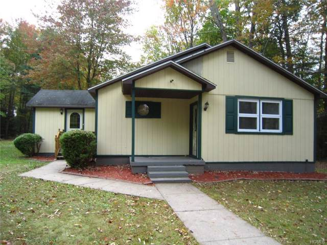 47 Dill Road, Monticello, NY 12777 (MLS #5093882) :: Marciano Team at Keller Williams NY Realty