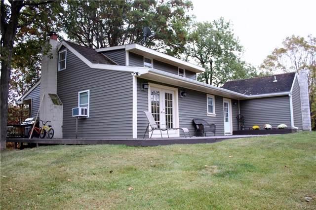 7 Forest Drive, Hyde Park, NY 12538 (MLS #5095198) :: Mark Seiden Real Estate Team