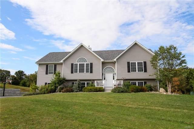 15 Richies Way, Pleasant Valley, NY 12569 (MLS #5095493) :: Mark Seiden Real Estate Team