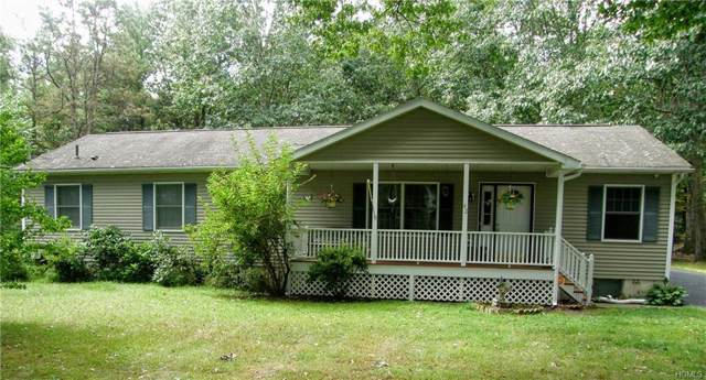 42 Delaware Drive, Sparrowbush, NY 12780 (MLS #5095542) :: Mark Seiden Real Estate Team