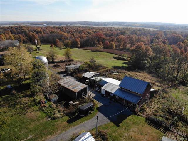 184 N Kaisertown Road, Montgomery, NY 12549 (MLS #5096761) :: William Raveis Legends Realty Group