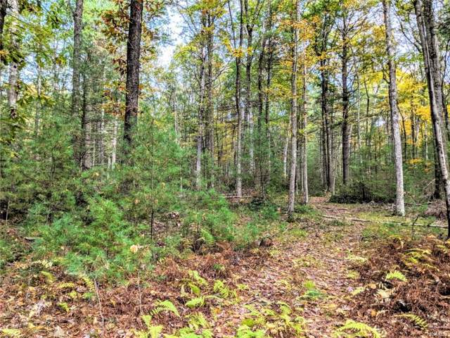 Eldred-Yulan Road, Eldred, NY 12732 (MLS #5096814) :: The Anthony G Team