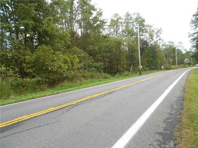 2150 Route 32, Modena, NY 12548 (MLS #5098323) :: William Raveis Baer & McIntosh