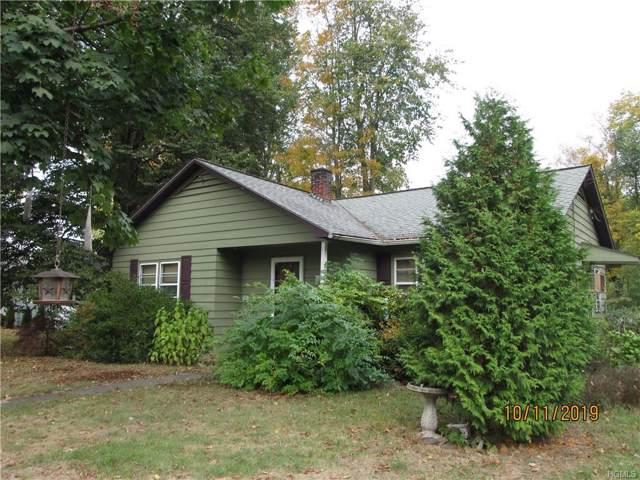 4 Kushner Lane, Ellenville, NY 12428 (MLS #5098338) :: William Raveis Legends Realty Group