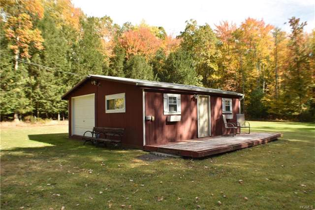 10 Ryan Place, Kerhonkson, NY 12446 (MLS #5099352) :: Mark Boyland Real Estate Team