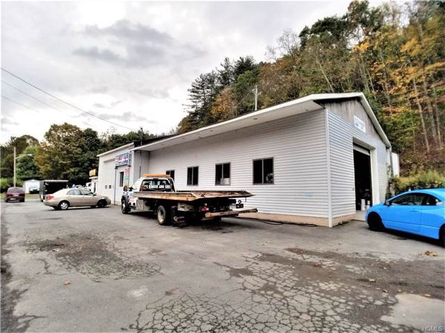 609 Us Route 209, Godeffroy, NY 12729 (MLS #5099455) :: William Raveis Baer & McIntosh