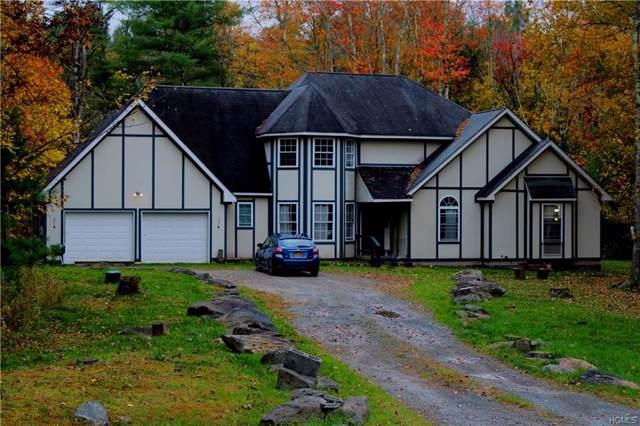 19 Eva Drive, Monticello, NY 12701 (MLS #5099542) :: Mark Seiden Real Estate Team