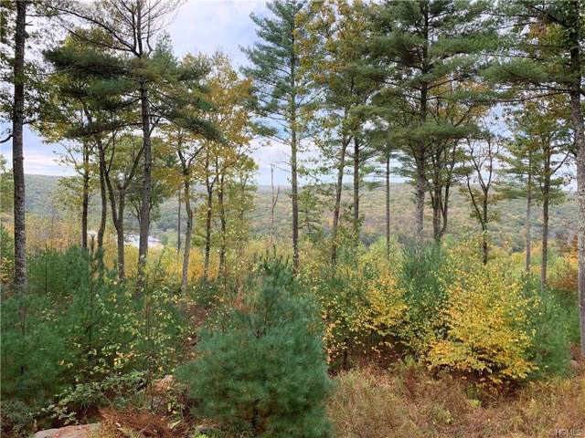 Eagle View, Narrowsburg, NY 12764 (MLS #5101601) :: The McGovern Caplicki Team