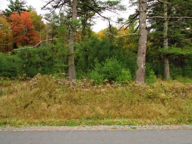 168 Joyland Road, Monticello, NY 12701 (MLS #5102075) :: William Raveis Baer & McIntosh