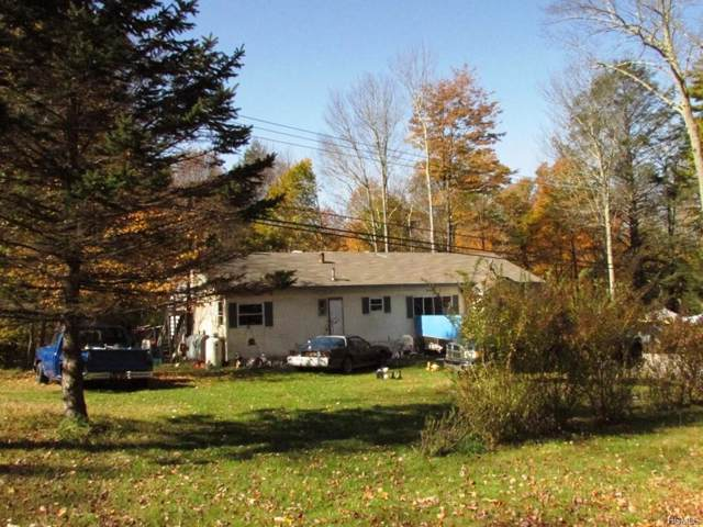 138 Old White Lake Turnpike, Swan Lake, NY 12783 (MLS #5102182) :: Marciano Team at Keller Williams NY Realty