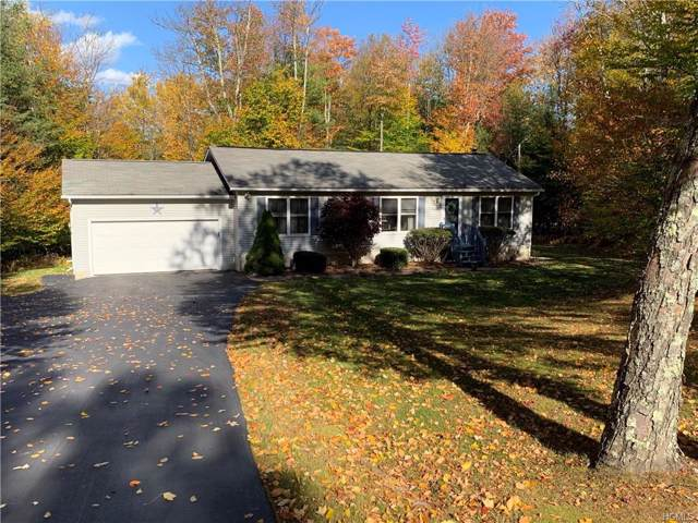37 Drake Road, Neversink, NY 12765 (MLS #5102251) :: William Raveis Legends Realty Group